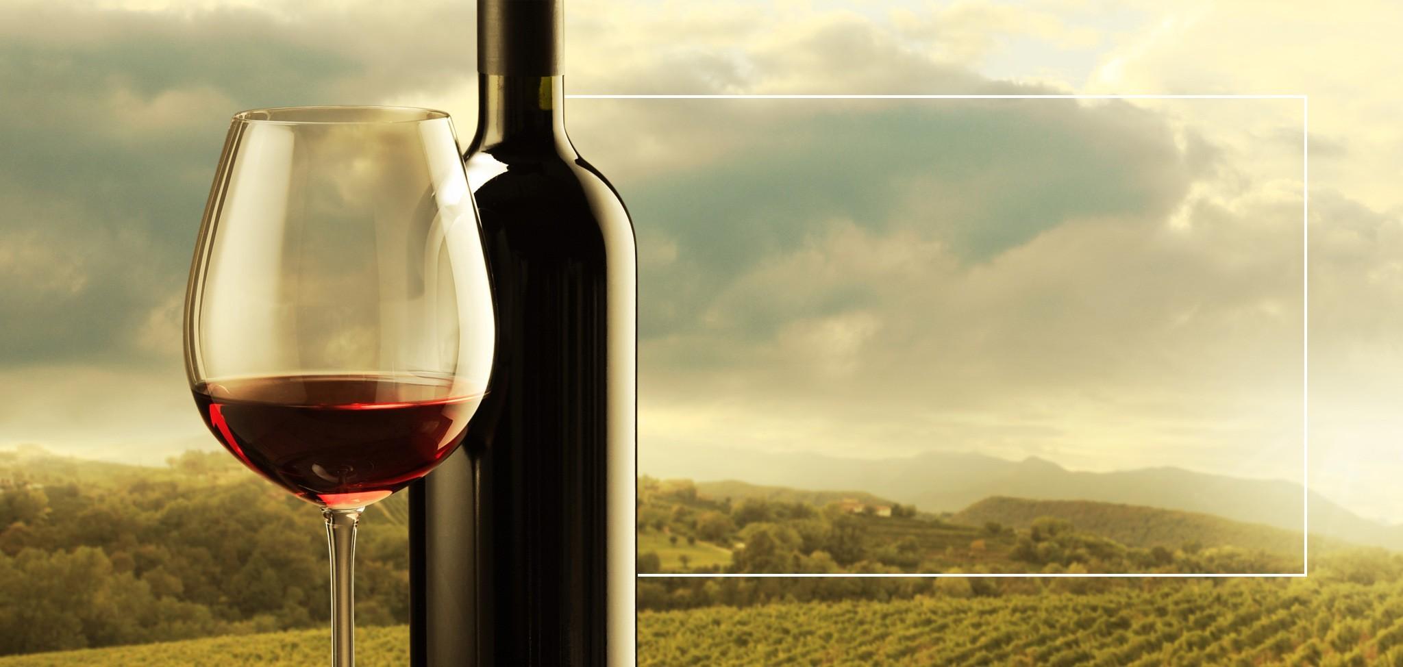 Onze wijnen uit de Piemonte